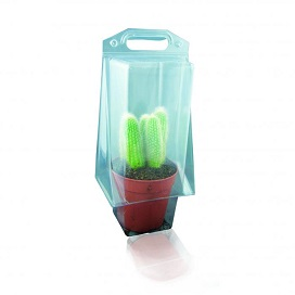 Blister - Cloques Jardinage - Grand Cactus Blister